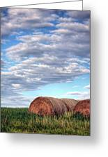 Hay It's Art Greeting Card by JC Findley