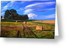 Hay Rolls On The Farm By Christopher Shellhammer Greeting Card