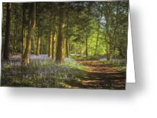 Hay Wood Bluebells 3 Greeting Card