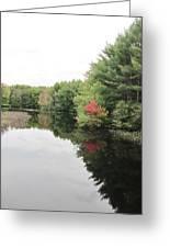 Haybrook Maine Foliage 6 Greeting Card