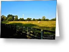 Hayfield With Distant Cell Tower Greeting Card