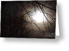 Hazy Moon Through The Trees Greeting Card