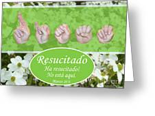 He Is Risen Spanish Greeting Card
