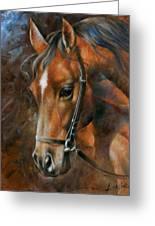 Head Horse Greeting Card