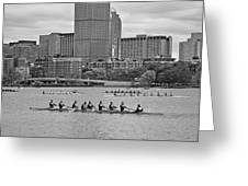 Head Of The Charles. Charles Rowers Black And White Greeting Card