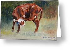 Head-scratching Heifer Pad Greeting Card