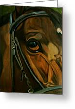 Head Stall Greeting Card