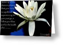 Healing Lily Greeting Card