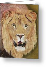 Hear Me Roar Greeting Card