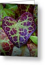 Heart Leaf Greeting Card