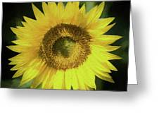 Heart Of Gold Sunflower Greeting Card