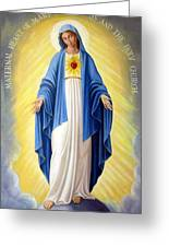 Heart Of Mary Greeting Card
