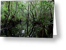Heart Of The Swamp Greeting Card