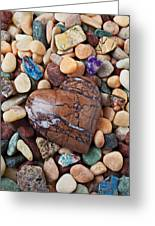Heart Stone Among River Stones Greeting Card by Garry Gay