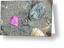 Hearts In Westport Greeting Card