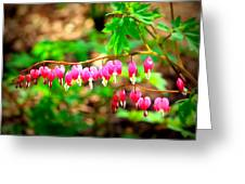 Hearts On Fire Greeting Card