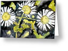 Heath Aster Flower Art Print Greeting Card