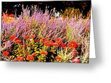 Heather And Sedum Greeting Card