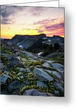 Heather Meadows Sunset Greeting Card