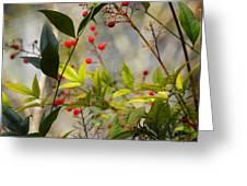 Heavenly Bamboo Greeting Card