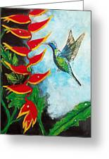 Heavenly Heliconia Greeting Card