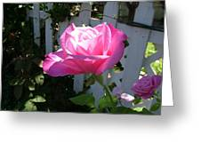 Heavenly Rose Greeting Card