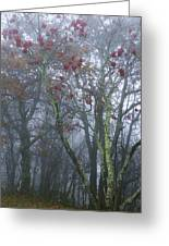Heavy Mist Greeting Card