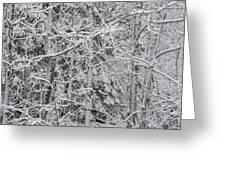 Heavy Snow Greeting Card