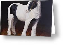Heavy Stallion  Glin Fair Greeting Card