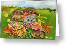 Hedgehogs Inside Scarf Greeting Card