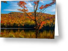 Heights Of Autumn Greeting Card