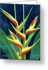 Heliconia Flowers #249 Greeting Card