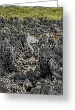 Hell - Grand Cayman Vertical Greeting Card