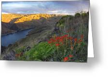 Hells Canyon View Greeting Card