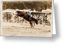 Helluva Rodeo-the Ride 4 Greeting Card
