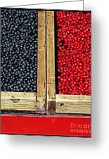Helsinkian Berries Greeting Card