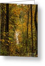Helton Falls Through The Leaves Greeting Card