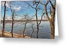 Hempstead Harbor Through The Trees Greeting Card