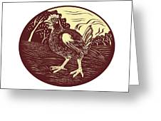 Hen Farm Oval Woodcut Greeting Card