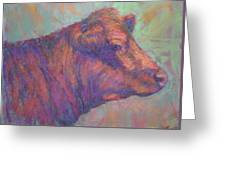 Henry's Red Angus Greeting Card