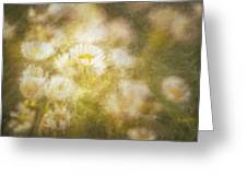 Her Beauty Alone Greeting Card