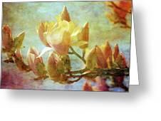 Herald Spring 8878 Idp_2 Greeting Card