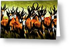 Herd Greeting Card