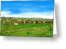 Herd Of Cows Under A Blue Sky In Green Hills Greeting Card