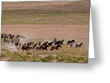 Herd On The Move Greeting Card