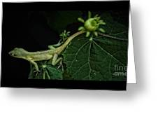 Here Lizard Lizard Greeting Card