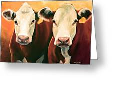 Herefords Greeting Card