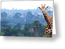 Here's Looking At You Kid.  Giraffe In Kenya Africa Greeting Card