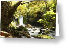 Hermon Stream Nature Reserve Banias Greeting Card