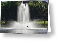 Heron Across A Fountain Greeting Card